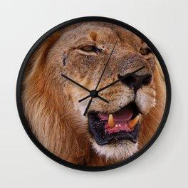 Lion - Africa wildlife Wall Clock