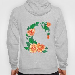 Frame from abstract roses Hoody