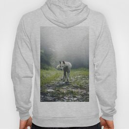 The Wolf (Color) Hoody