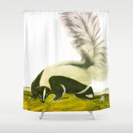 Large-tailed Skunk Hand Drawn Illustration by John James Audubon Shower Curtain