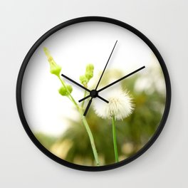 Nature photography dandelion I Wall Clock
