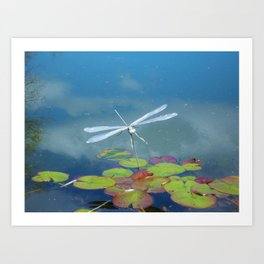 Silver Dragonfly. Art Print