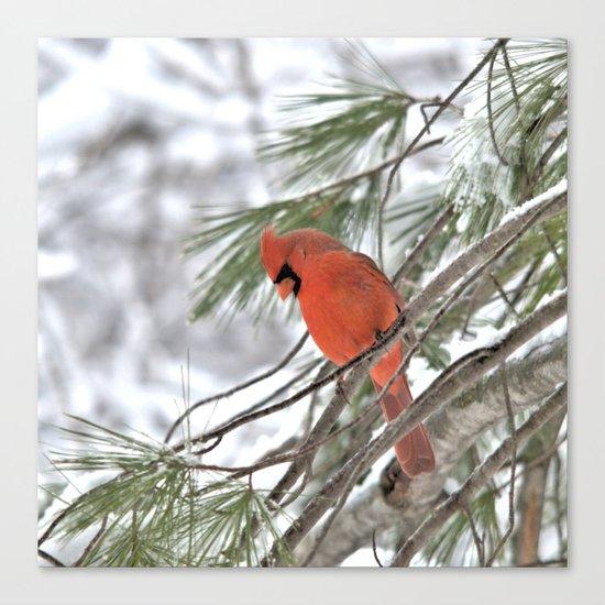 Snow Globe Cardinal (square) Canvas Print