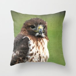 Red-tailed Hawk III Throw Pillow