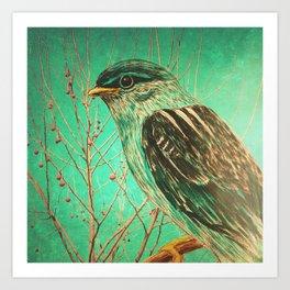Bird Staring Art Print