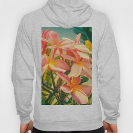Magnificent Existence Hoody