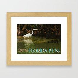 Great White Heron FL Keys Framed Art Print