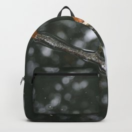 water and stick Backpack