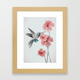 Hummingbird with Hibiscus Framed Art Print