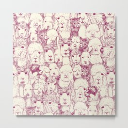 just alpacas cherry pearl Metal Print