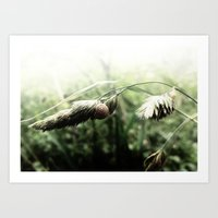 grass Art Prints featuring grass by emegi