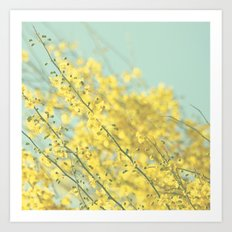 Sunny Blooms 3 Art Print