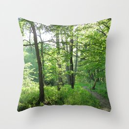 Watercolor Landscape Eno River 06, NC Throw Pillow