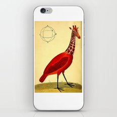 Bird Giraffe iPhone & iPod Skin