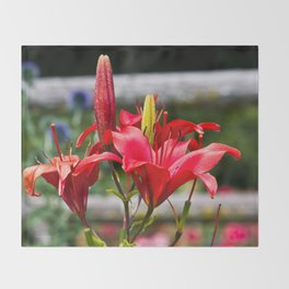 Red Lilies Throw Blanket
