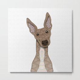 Cute Fawn & White Greyhound Metal Print