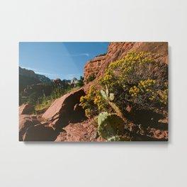 Desert flora in Sedona AZ Metal Print