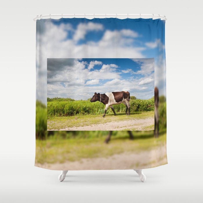 Calf walking in natural landscape Shower Curtain