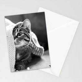 Peekaboo Kitty Stationery Cards