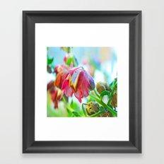 Macro Flower Framed Art Print