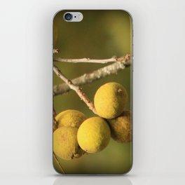 Great balls! iPhone Skin