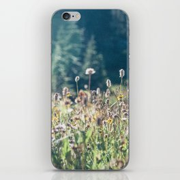 FALL FIELDS | 01 iPhone Skin