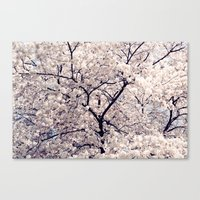 cherry blossom Canvas Prints featuring Cherry Blossom * by Neon Wildlife