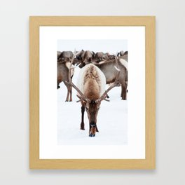 Humble Framed Art Print