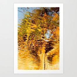 Pandanus Reflection Burgess Creek Art Print