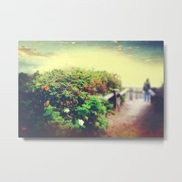 ROSE HIP REVERIE Metal Print