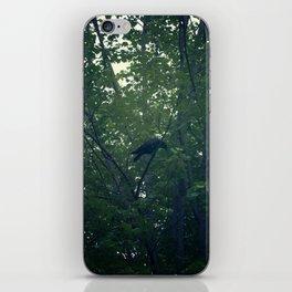 Crow in Tree iPhone Skin