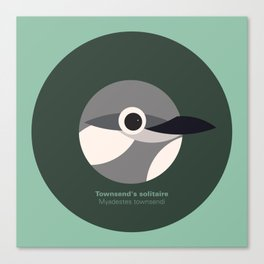 Townsend's solitaire Canvas Print
