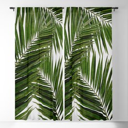 Palm Leaf III Blackout Curtain