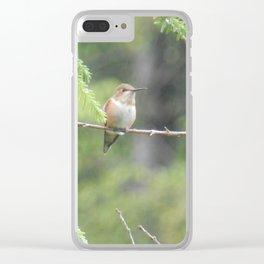 Hummingbird Clear iPhone Case