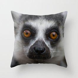 Lemur Love Throw Pillow