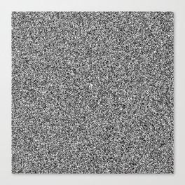 TV noise Canvas Print