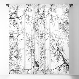 Black branches, white sky Blackout Curtain