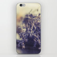 l a v a n d e   iPhone & iPod Skin