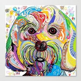 Maltese Puppy Canvas Print