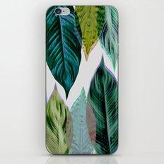 Green Leaves iPhone & iPod Skin