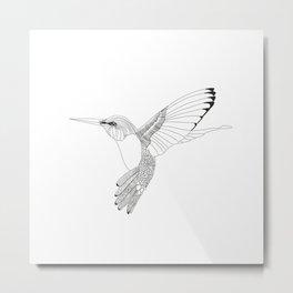 Kolibri sketch Metal Print