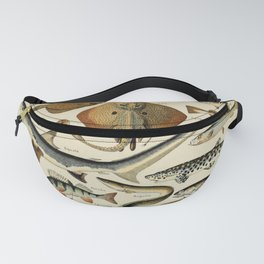 Poissons Pour Tous by Millot and Larousse Fanny Pack
