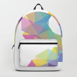 Fig. 036 Colorful Circle Backpack