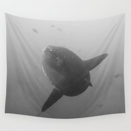 Mola mola sunfish in B&W Wall Tapestry