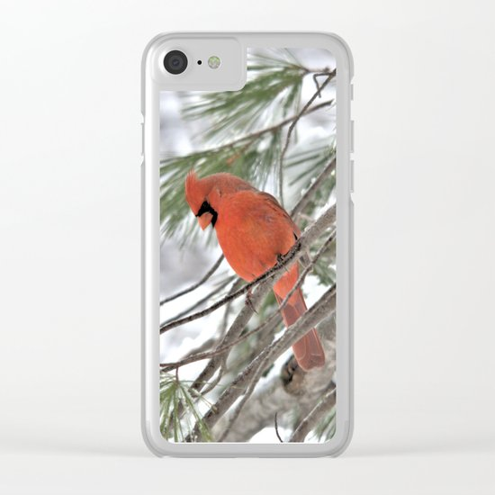 Snow Globe Cardinal Clear iPhone Case