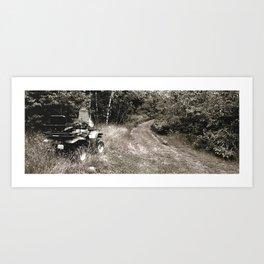 timber Art Print