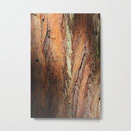 Muir Redwood I Metal Print