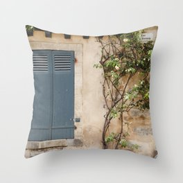 Roses on the Wall Throw Pillow