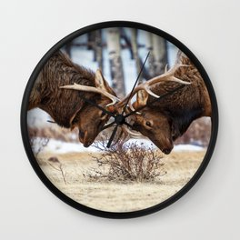 Elk In Rut Colorado Wildlife Rocky National Park Wall Clock