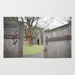 Open Doors Rug